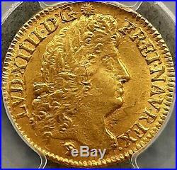 Louis XIV Louis d'or à l'écu 1690 Lyon